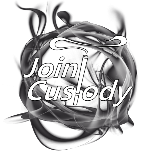 joint-custody-case
